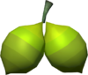 Sourberry detail.png